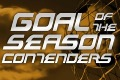 Goal of the season 2012-13