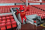 Mighty Red Family Tour & The Steven Gerrard Collection image