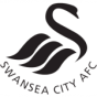 Swansea_city_afc_4df1e2d6472f4505028043_88X88